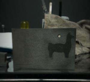 alpaca04a